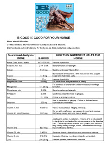 horse-nutrition-needs-bgood