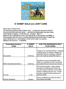 horse-nutrition-needs-osweetgold